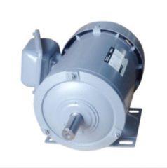 Ba pha, chân đế 1/2HP-TFO-K-6P-IP55-F.INS(380V/50Hz)