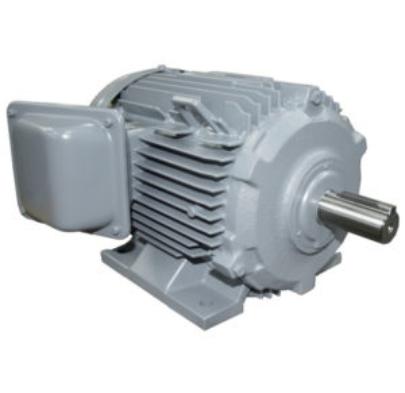 Ba pha, chân đế 10HP-TFO-KK-2P-IP55-F.INS(380V/50Hz)0