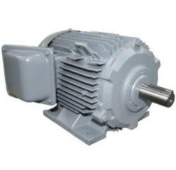 Ba pha, chân đế 100HP-TFO-KK-4P-IP55-F.INS(380V/50Hz)