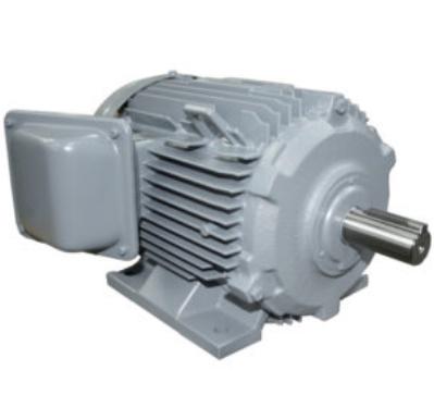 Ba pha, chân đế 100HP-TFO-KK-4P-IP55-F.INS(380V/50Hz)0